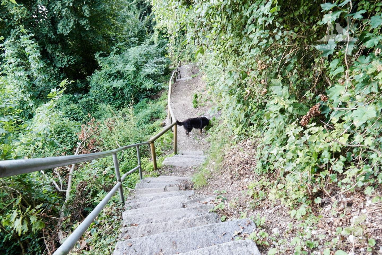 ... geht es über Treppen und ...