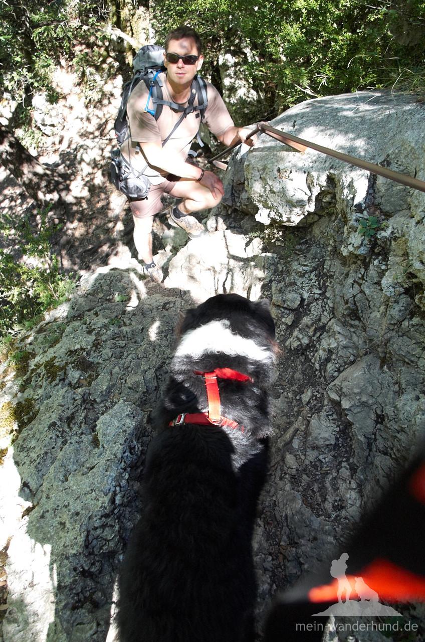 ... oben am Felsbrocken angekommen ist es doch besser, Ari wartet ...