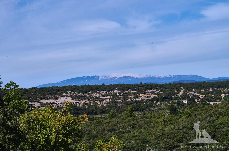 ... von hier sogar bis zum schneebedeckten Mont Ventoux sehen.