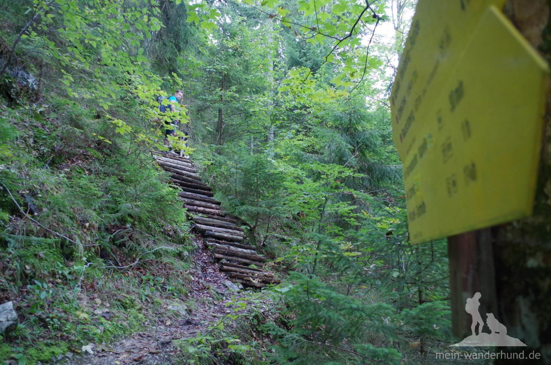 Holztreppen am Knappensteig.