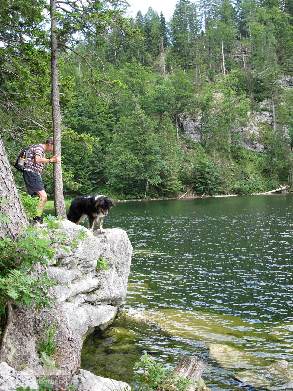 Wild-romantisch führt ein Pfad um den See herum.