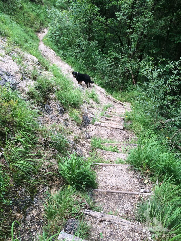 ... und über Treppen bergab geht es bis ...