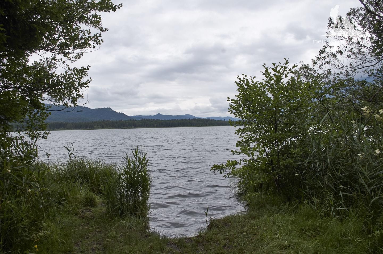 ... und am See entlang.