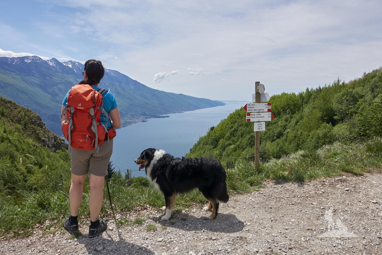 Wandern mit Hund Gardasee - Cima della Nara: Abzweig zum Punta dei Larici