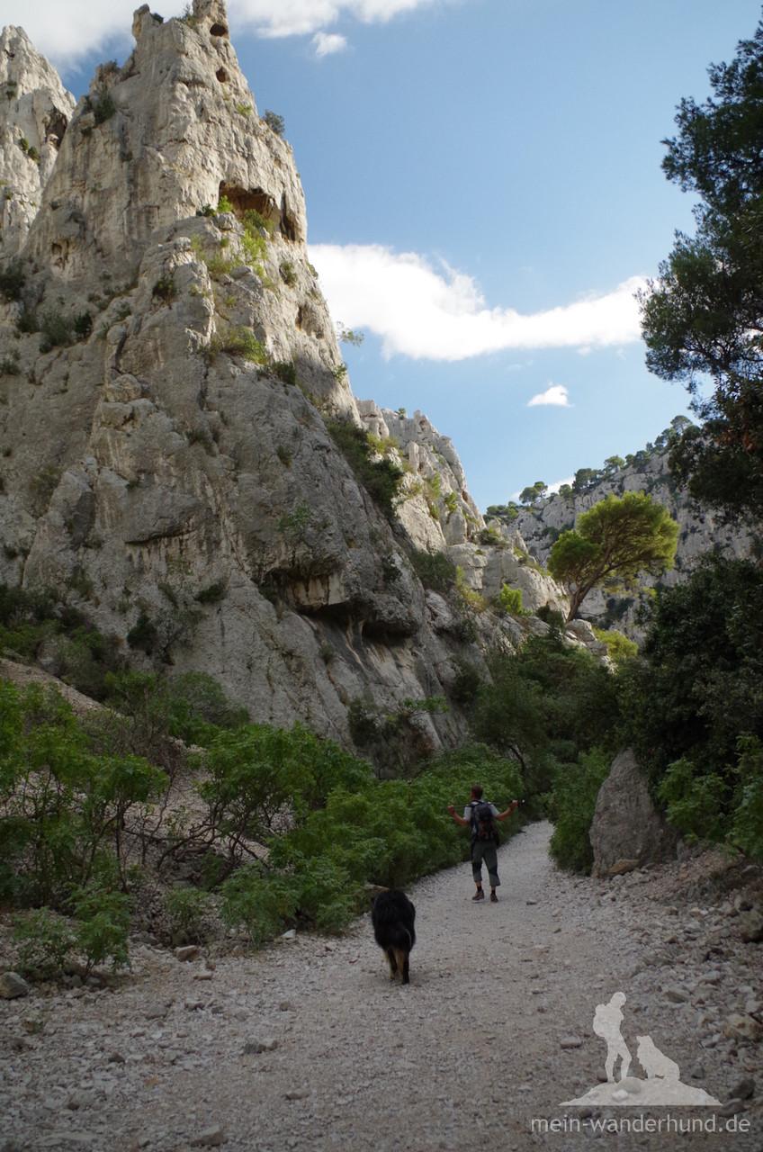 Ein breiter Weg führt in die schönste Calanque.