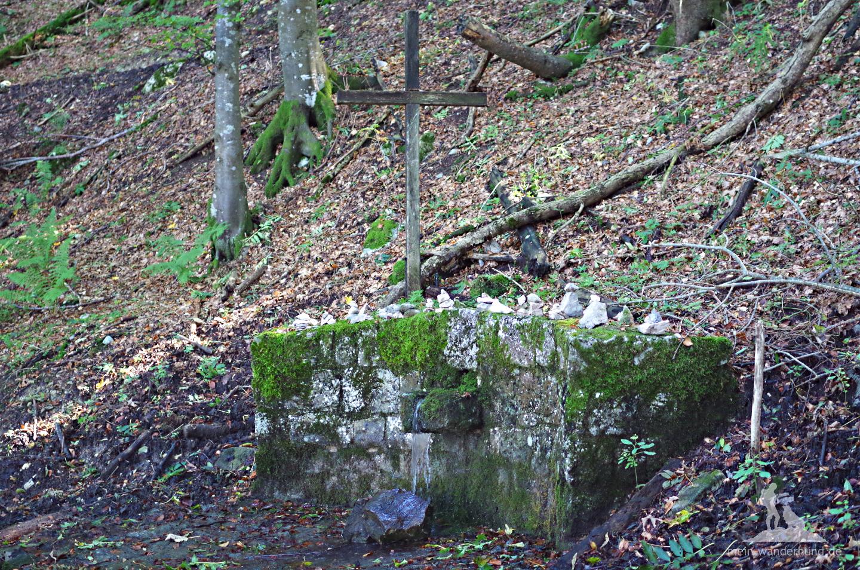 Mystisch ist es an der kleinen Quelle - ein Kraftort unterhalb der Schnappenkirche.