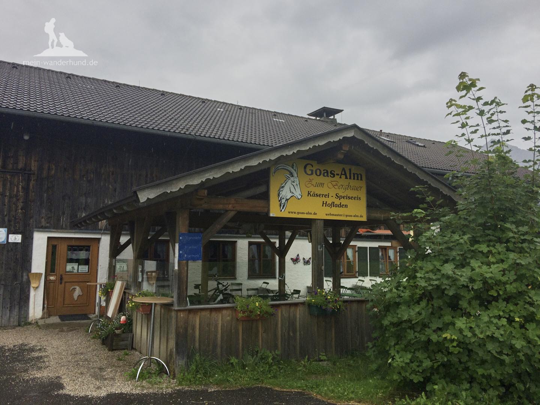 Buckelwiesenwanderung bei Krün: Bei der Goasalm