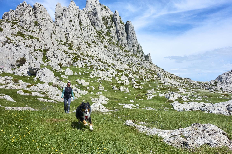 Urlaub mit Hund in Kroatien: Mali Alan, am Tulove Grede