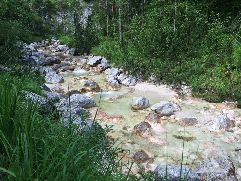 ... grünes Wasser ...