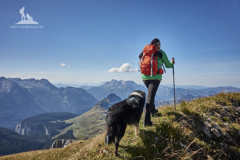 Wandern mit Hund Seehorn: beim Abstieg