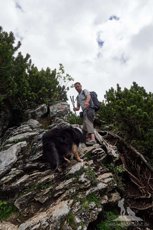 ... geht es über Schrofen und leichten, teils ausgesetzten Kletterstellen ...