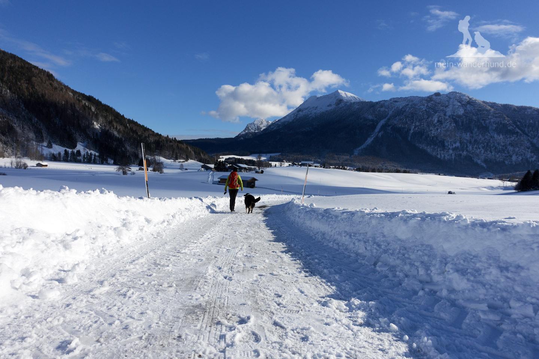 Winter Wanderung Inzell: Im sonnigen Tal