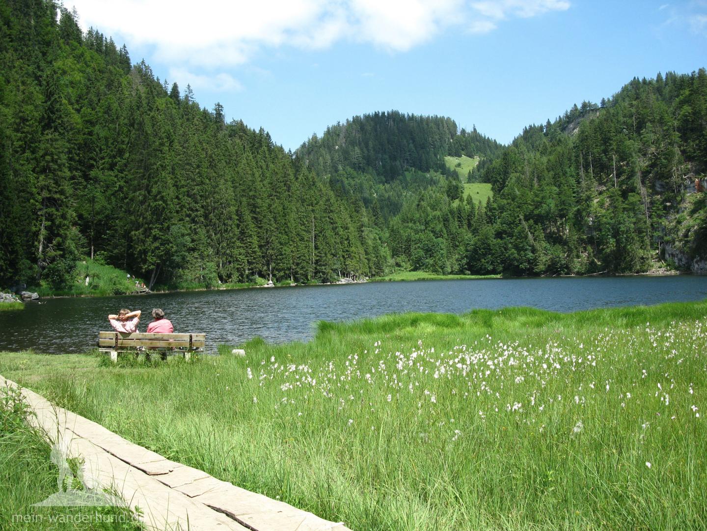 Wieder schöner Blick am See.
