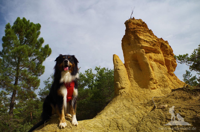 Fotoshooting im Colorado.