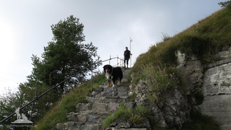 Auf der anderen Seite des Gipfels führt der Steig wieder ...