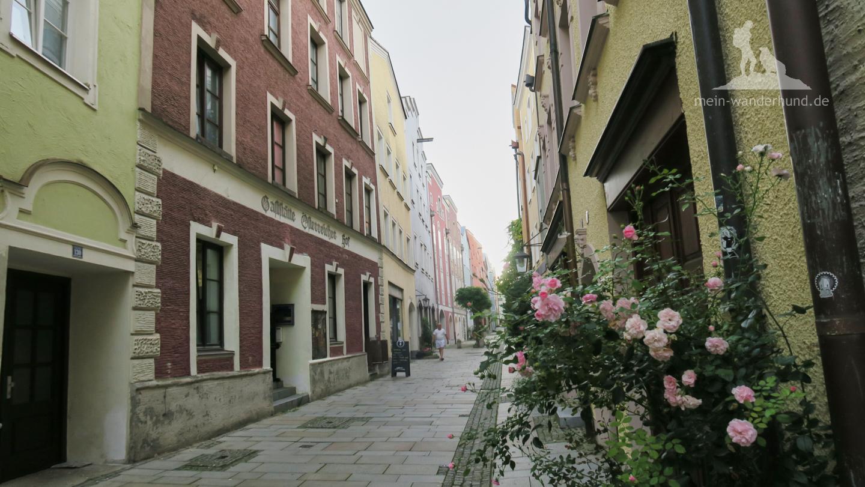 Burghauser Grüben.