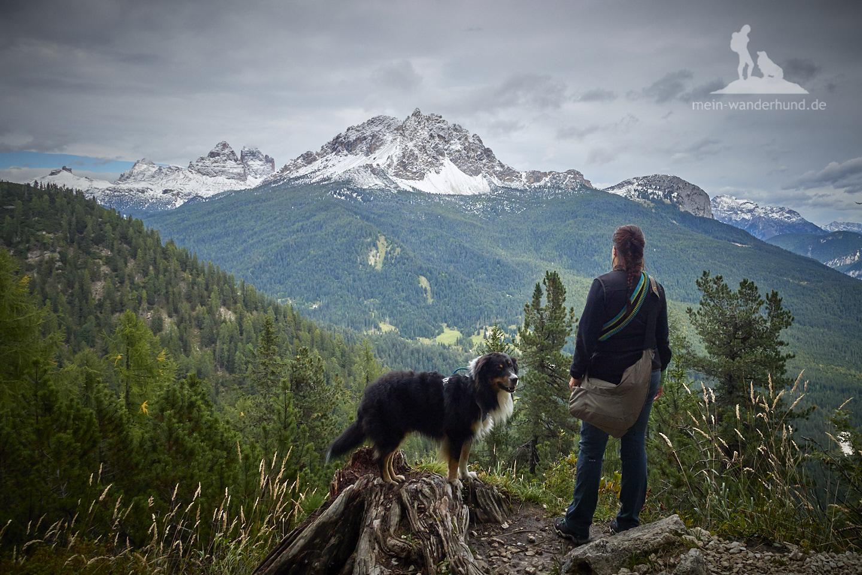 Mit Hund in den Dolomiten: Wanderung zum Lago di Sorapiss