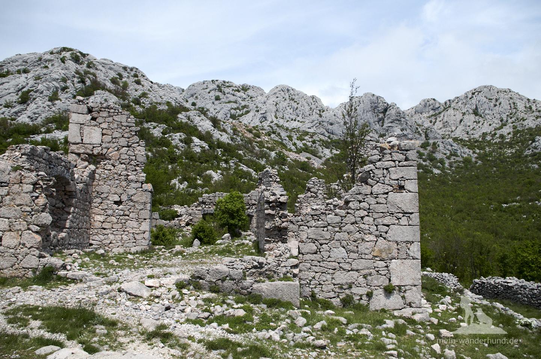 Urlaub mit Hund in Kroatien: Ruinen Mali Alan