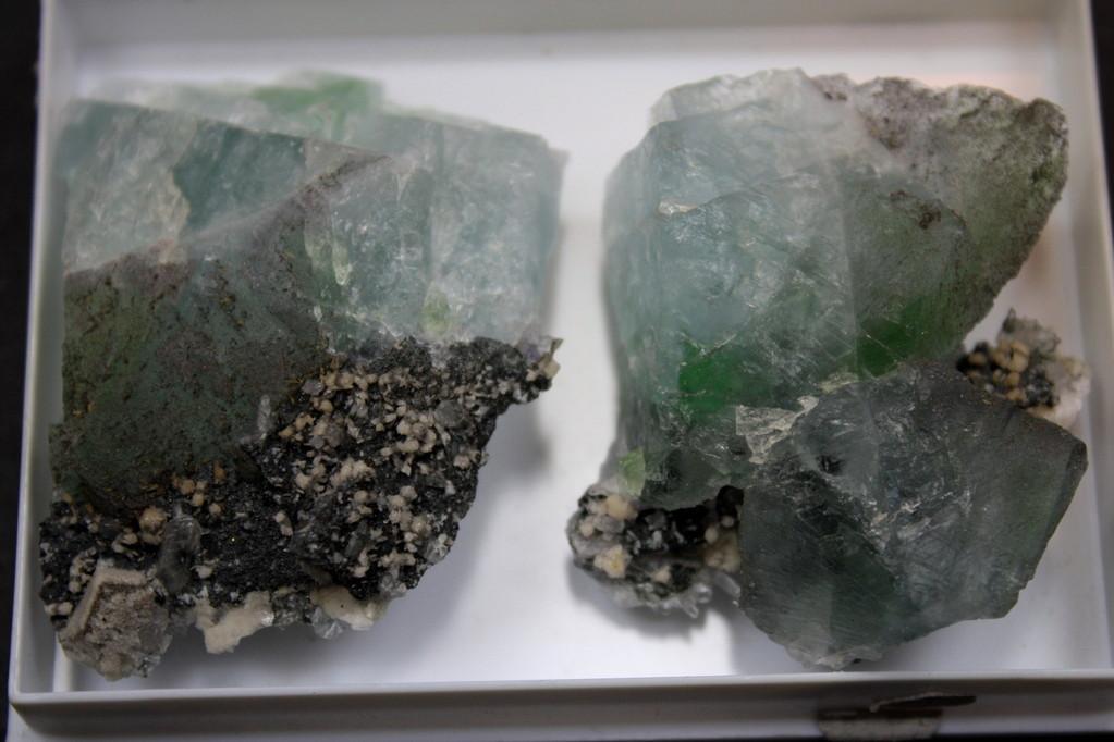 hellblau - grün