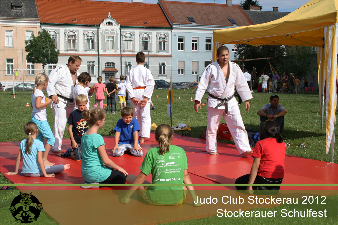 Schulfest Judo Stockerau