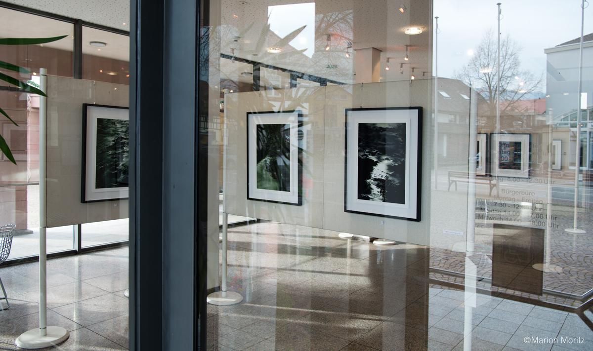 Einzelausstellung im Kunstverein Gundelfingen