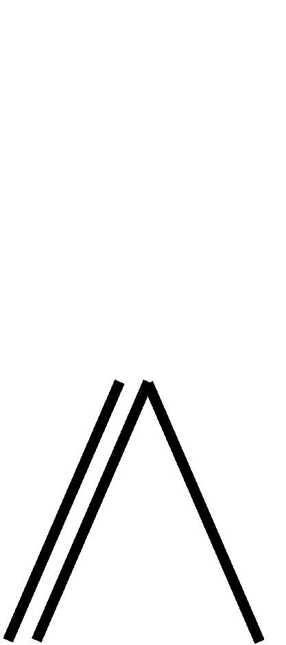 Doppelleiter