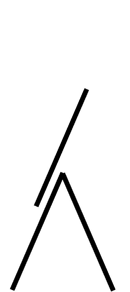 Dopelleiter mit Ausschub