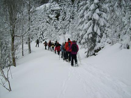 Schneeschuhtour im Schwarzwald