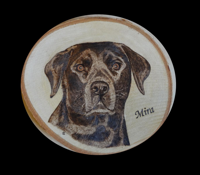 Brandmalerei von Mira auf runder Birkenscheibe