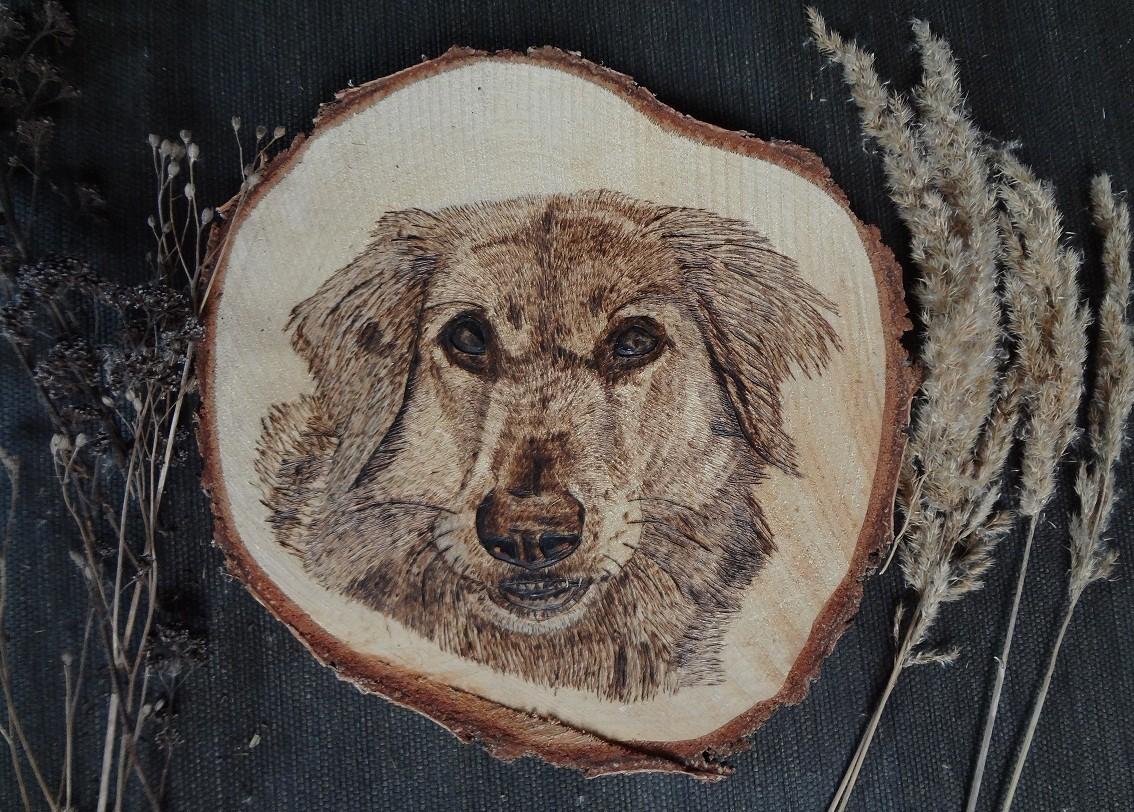 """Hund """"Gina"""" auf einer großen Baumschreibe"""