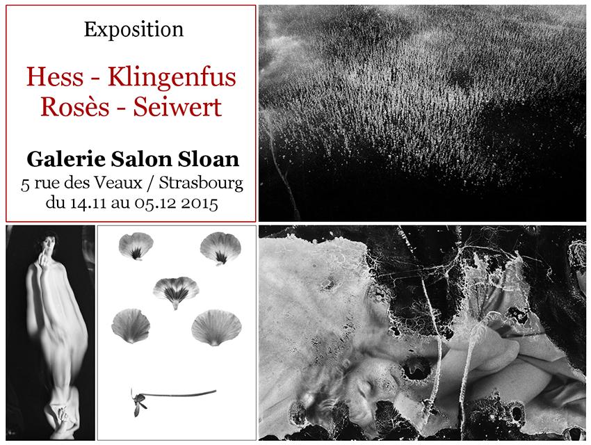 Nicolas Rosès Photographe Galerie Salon Sloan Strasbourg