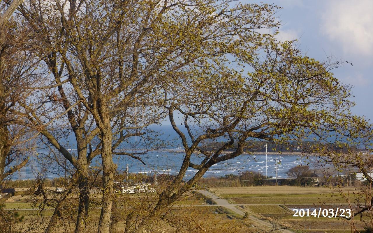 3月23日:日本海のうつろい