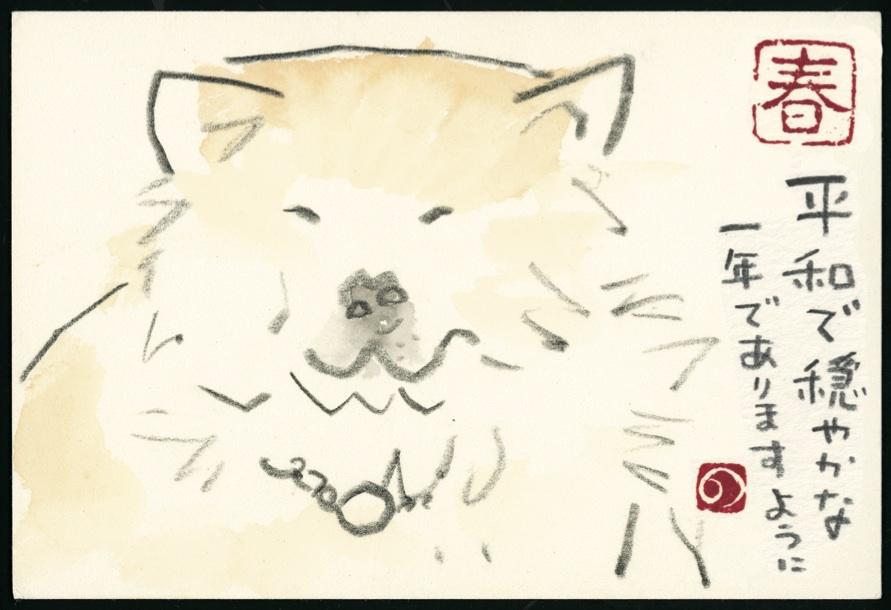 イヌ 秋田犬