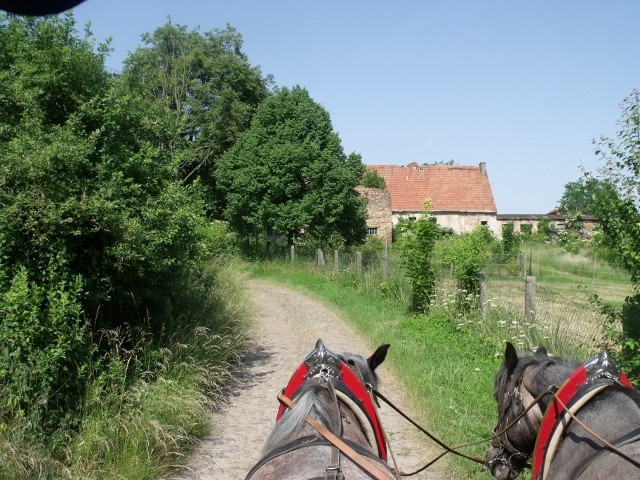 Buchholzer Weg