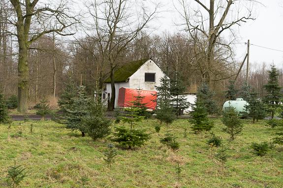 Mein Beitrag auf New Landscape Photography zum Thema Edgeland: Roter Anhänger an einem Waldstück bei Münster.