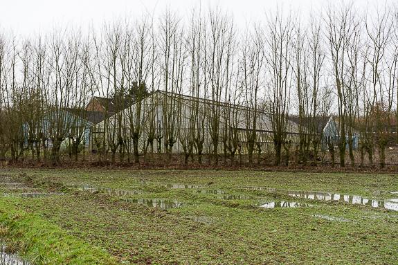 Mein Beitrag auf New Landscape Photography zum Thema Edgeland: Gewächshaus bei Loevelingloh, Münster.