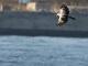 11月28日・火練習90回目 南港野鳥園