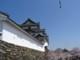 和歌山城    和歌山県