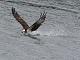 10月24日・火練習79回目 南港野鳥園
