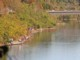 11月4日(水)  上津ダム湖