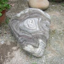 鞘形褶曲の岩