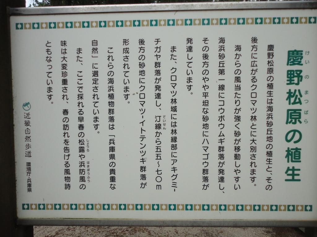 慶野松原の説明