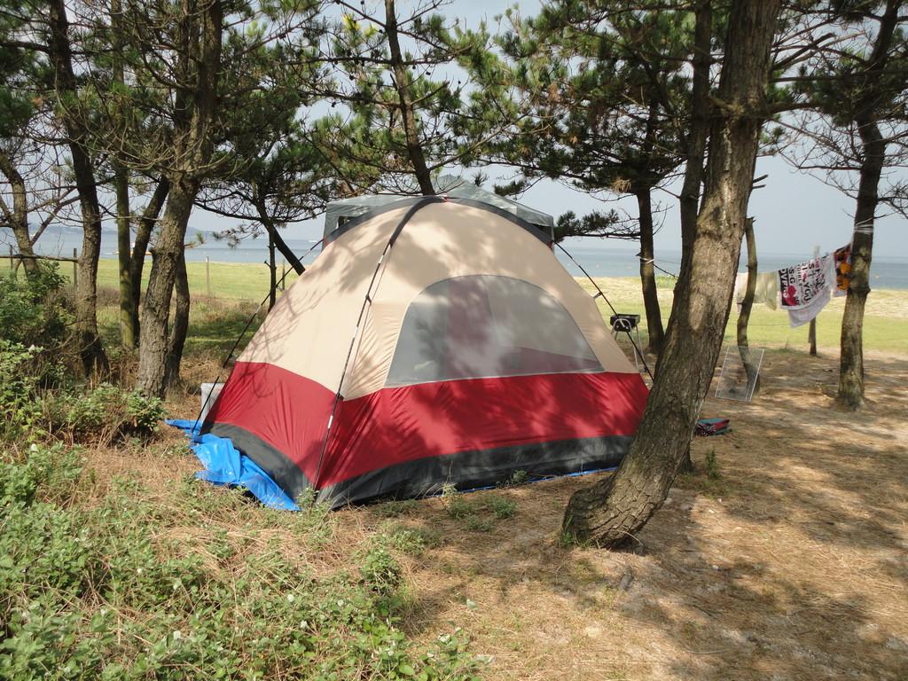 松原のテント