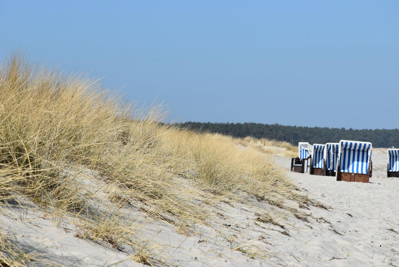 Strandkörbe am Strand in Prerow
