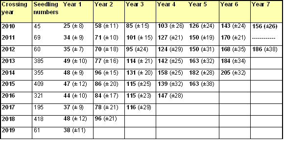 Number of  leaf nodes on apple seedlings during first five years of growth