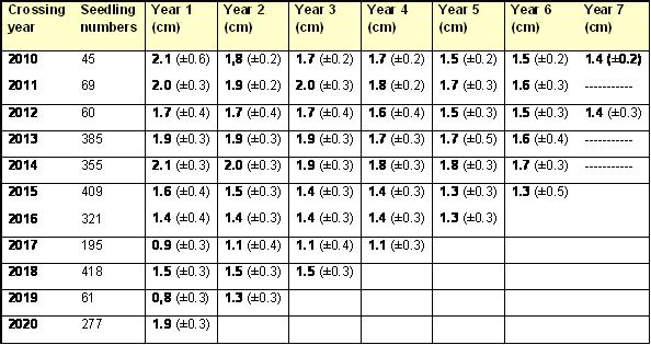 Mean internodal distances of apple seedlings