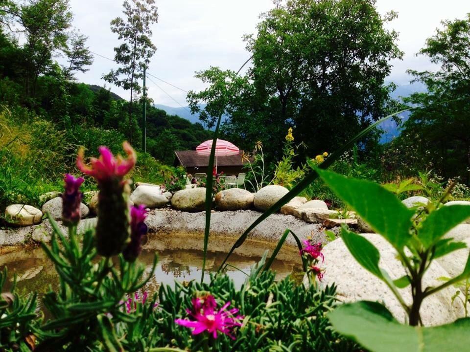 Kleiner Relaxsee im Garten