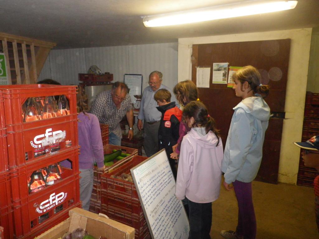 préparation des paniers de légumes pour l'AMAP