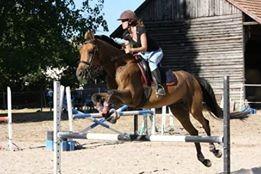 carrière du centre equestre
