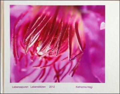 Das Fotobuch erschien im Rahmen der Ausstellung Lebensspuren Lebensblüten. A4 Querformat, 106 Seiten